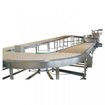 Hard Biscuit Production Line Bear Biscuit Machine Making Machine