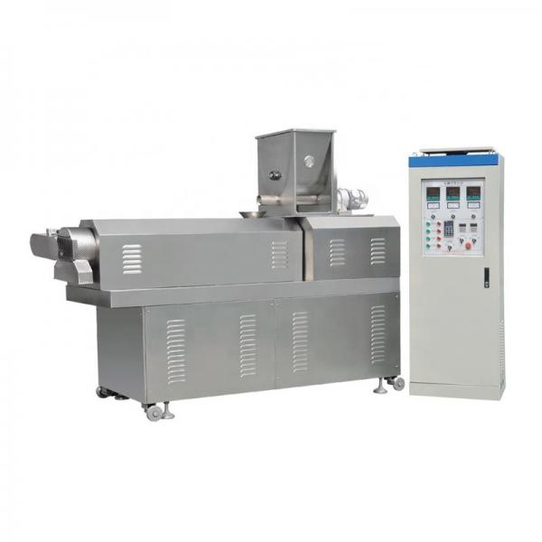 Double Extruder to Produce Crispy Corn Flakes Cereal Snaks Food Ce Certificated #3 image